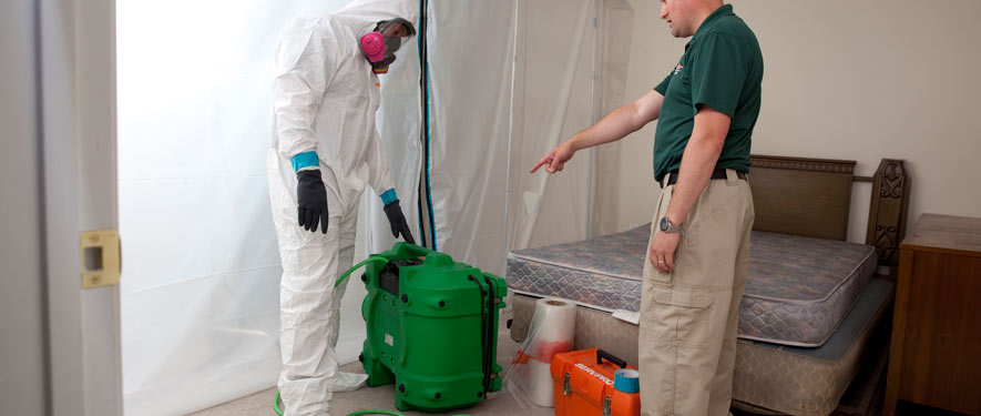 Gaffney, SC mold removal process